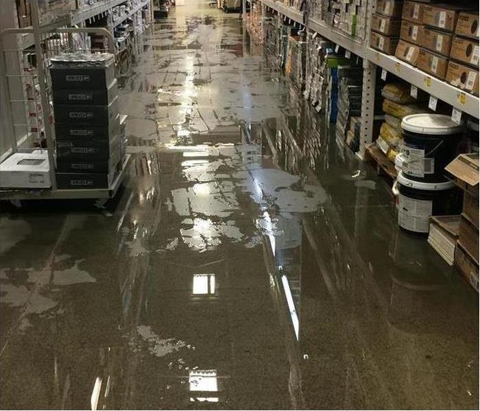 Commercial Water damage to your business in Homewood-Floosmoor