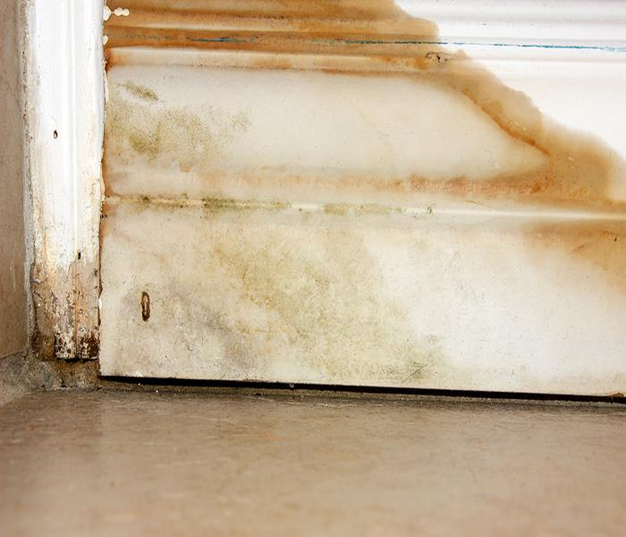 Water Damage SERVPRO Provides Top Quality Water Damage Restoration In Homewood!
