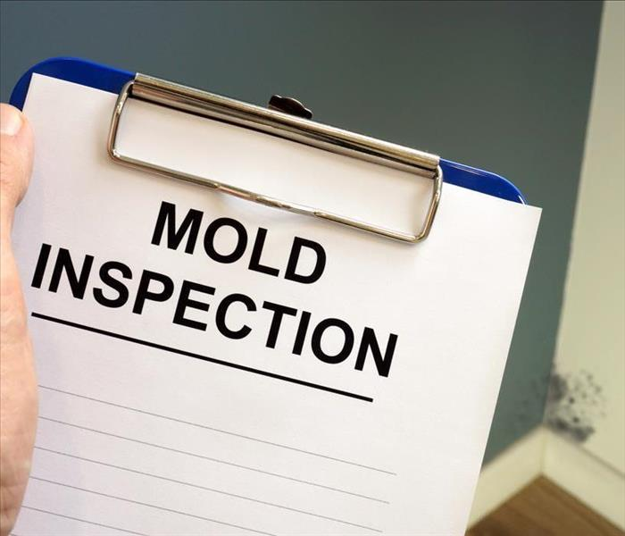 MOLD INSPECTION on a Clipboard