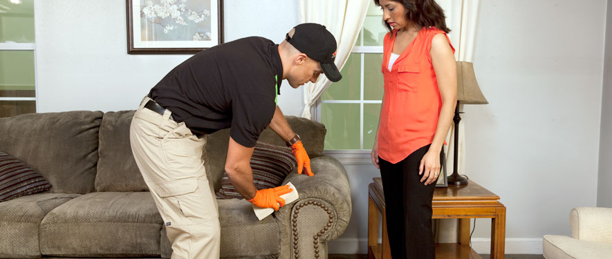 Matteson, IL carpet upholstery cleaning